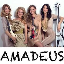 Contact Impresar - Pret-  Amadeus Image